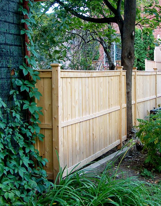 cedar fencing ideas 15