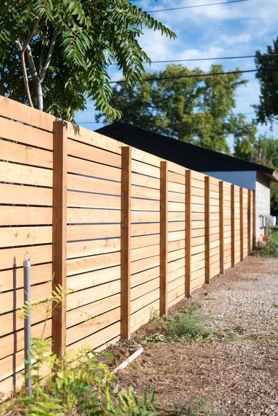 cedar fencing ideas 19