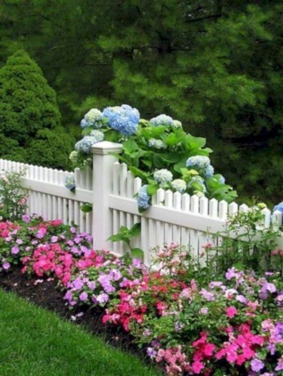 fence landscaping ideas 13