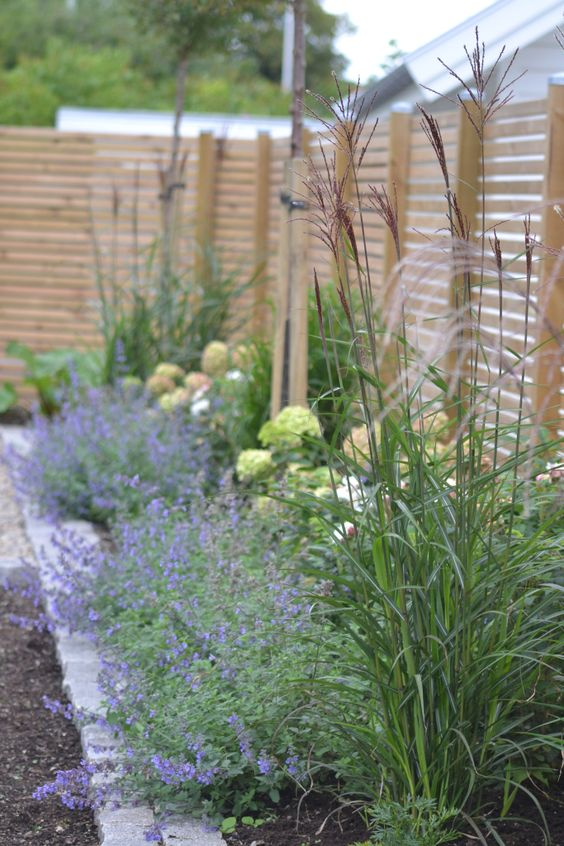fence landscaping ideas 23