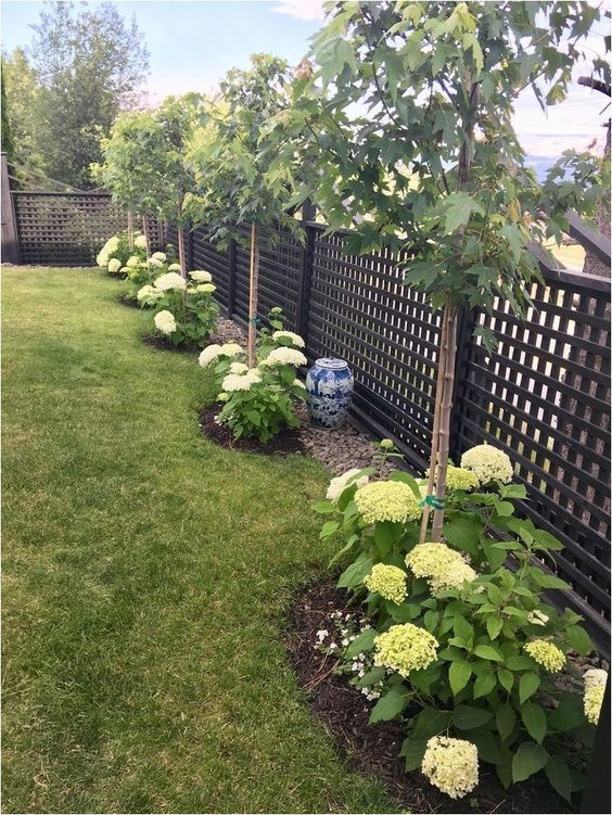 flower backyard ideas 2