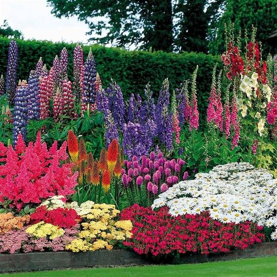 flower backyard ideas 9