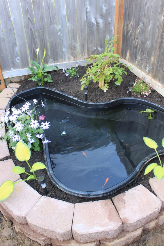 small backyard pond 7