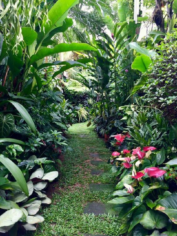 tropical backyard ideas 18