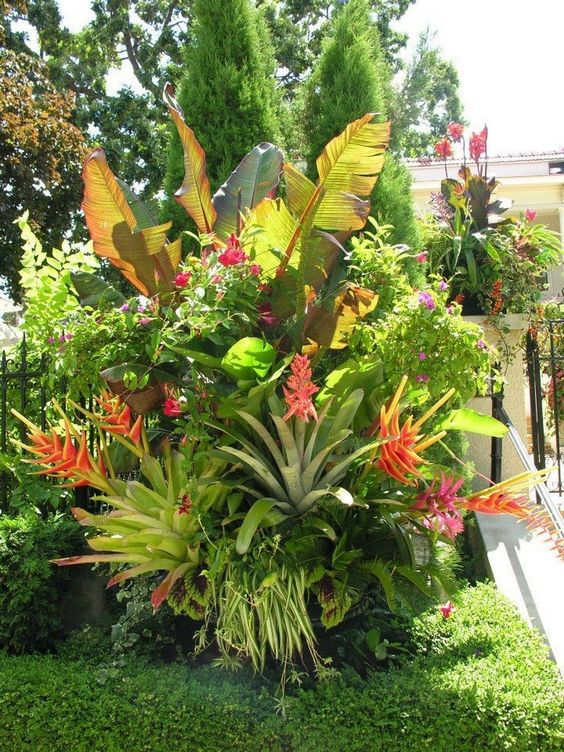 tropical backyard ideas 3