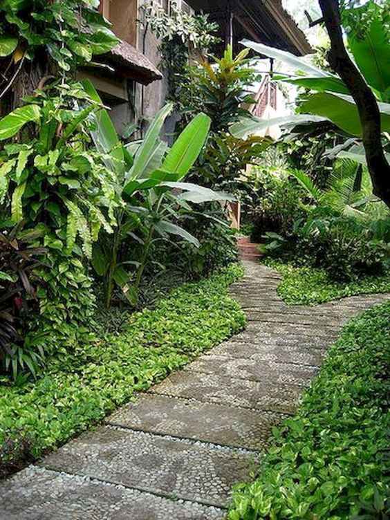 tropical backyard ideas 8