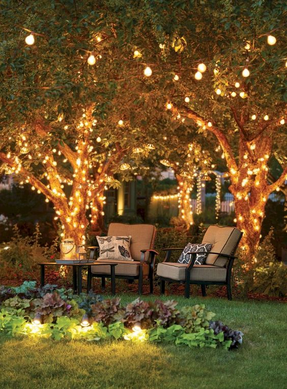 backyard trees ideas 25