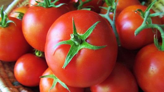 cách chọn mướp, cách chọn cà chua, cách chọn khoai tây, cách chọn bí đao, cách chọn cà tím, cách chọn đậu