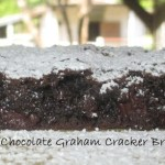 Dark Chocolate Graham Cracker Brownies