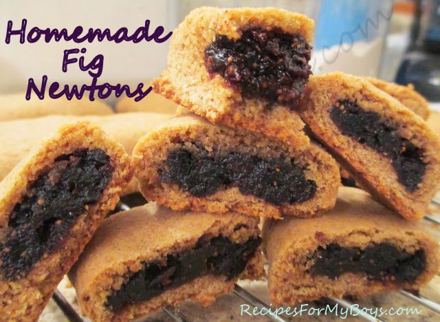 You are currently viewing Homemade Fig Newtons
