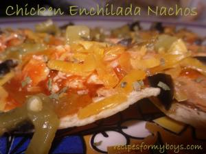 Easy Chicken Enchilada Nachos