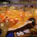 Read more about the article Easy Chicken Enchilada Nachos