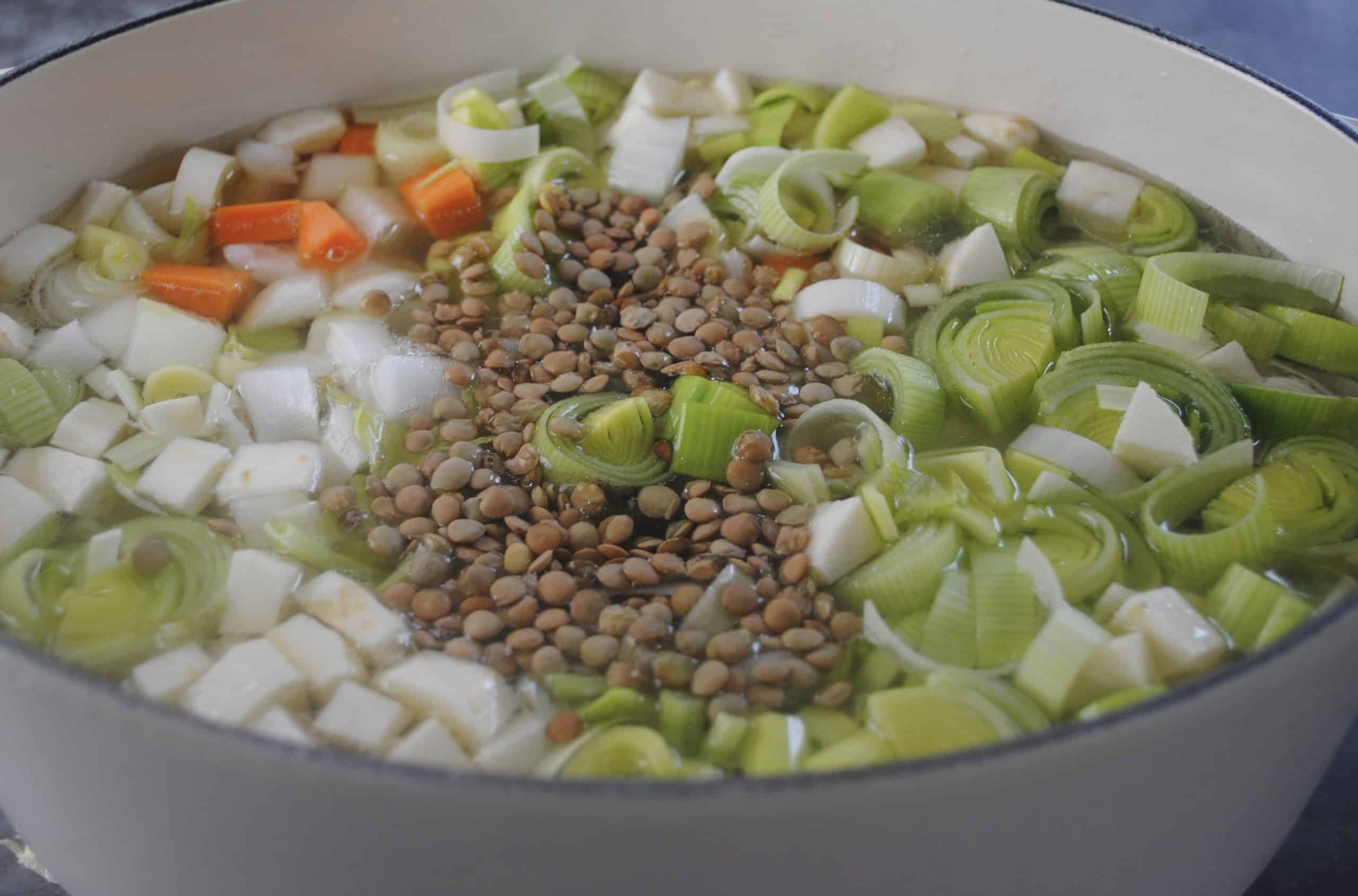 Add chopped onion, carrot, celery, parsnip, leek, barley and lentils to strained stock for hearty chicken vegetable and lentil soup