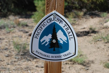 Pacific Crest Trail - Wild Cheryl Stayed