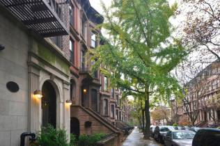 Rue de Brooklyn, en bas de l'immeuble de notre AirBnB, New York.