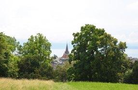 Vue sur Lausanne et le Lac Léman depuis un parc