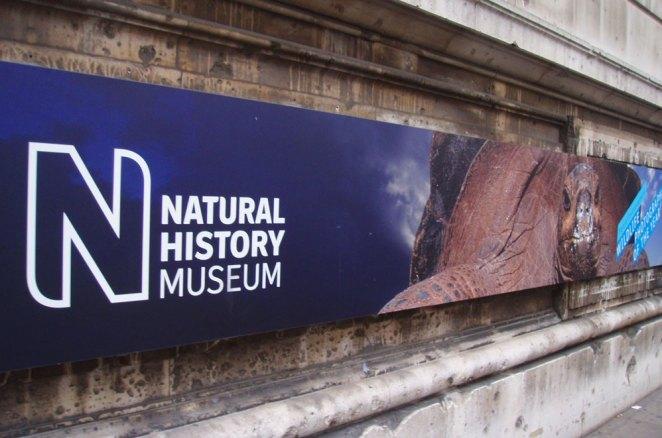 Entrée du musée d'histoire naturelle, Londres