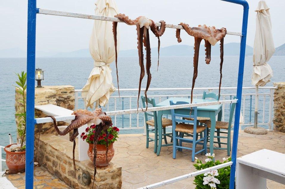 Les poulpes qui sèchent à l'air libre en bord de route du village d'Hermione, Grèce