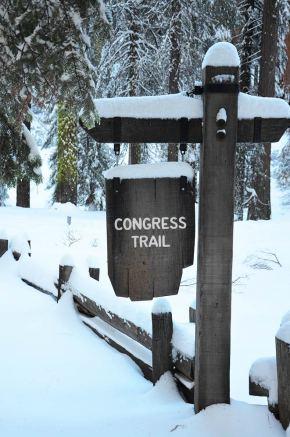 Panneau indiquant le début de la randonnée Congress Trail, Sequoia National Park