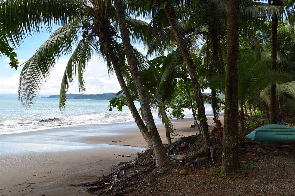 Plage magnifique du Costa Rica