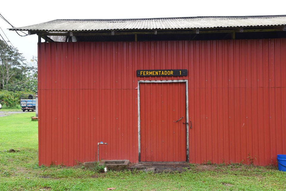 Fermentador de la Finca La Amistad Cacao Lodge, Costa Rica
