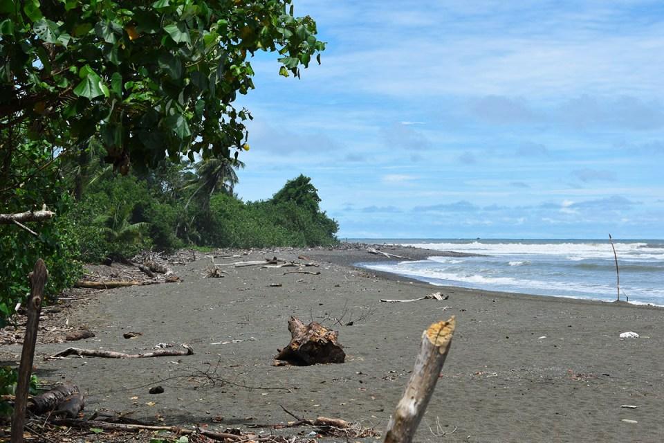 Plage du Parc Corcovado, Costa Rica