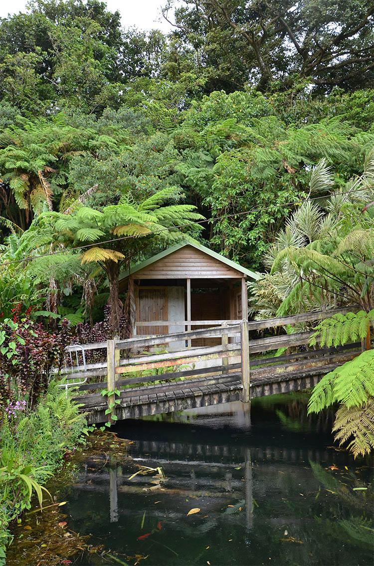 Cabane dans le parc de la Maison de la Banane, Guadeloupe