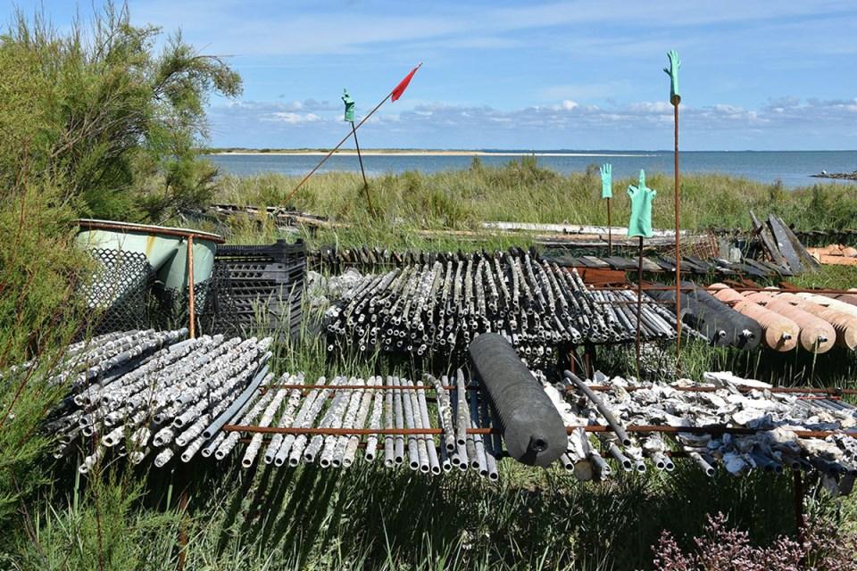 Découverte de l'ostériculture face à la mer sur le site de Fort-Royer, Ile d'Oléron
