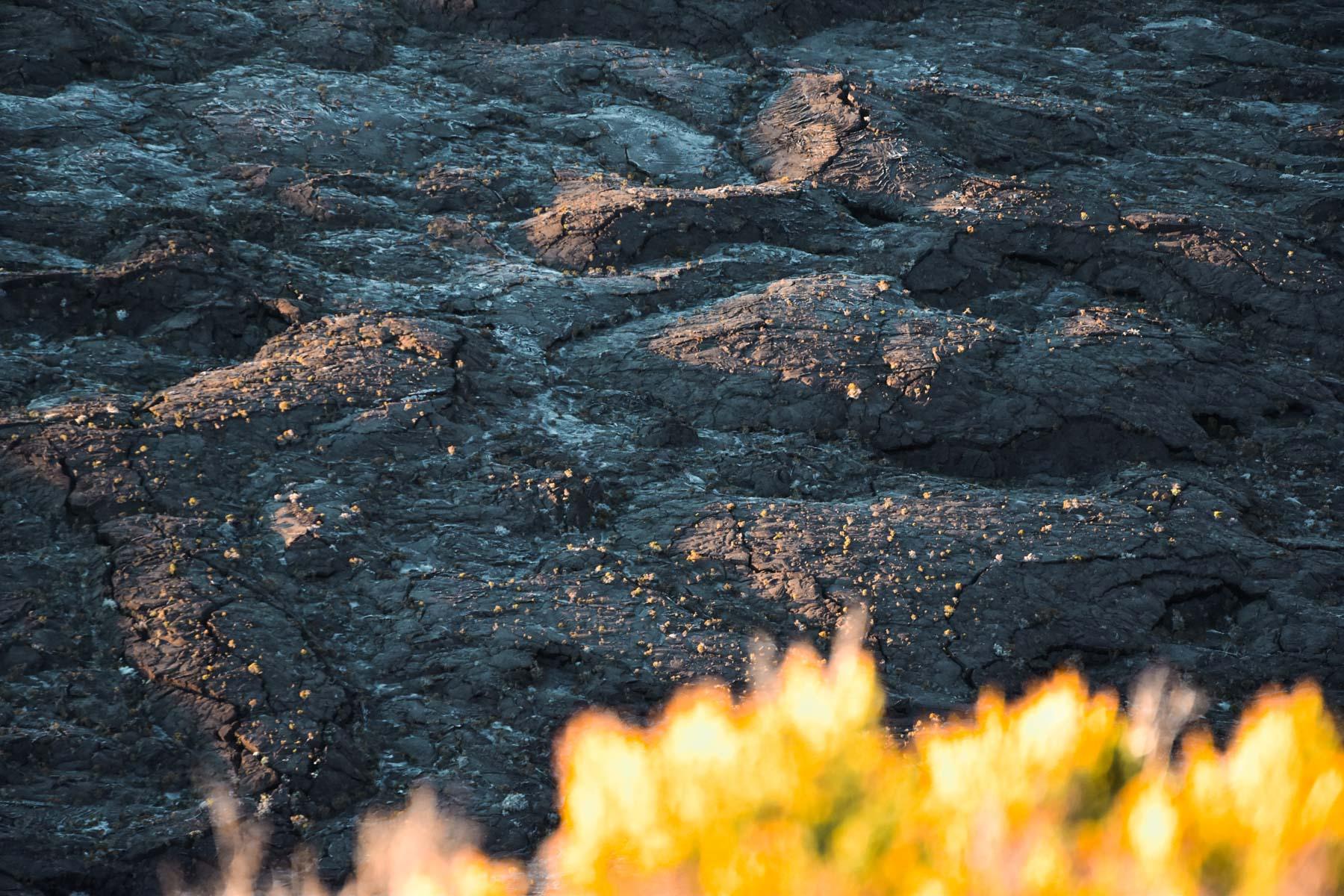 Terre noire du Piton de la Fournaise, La Réunion