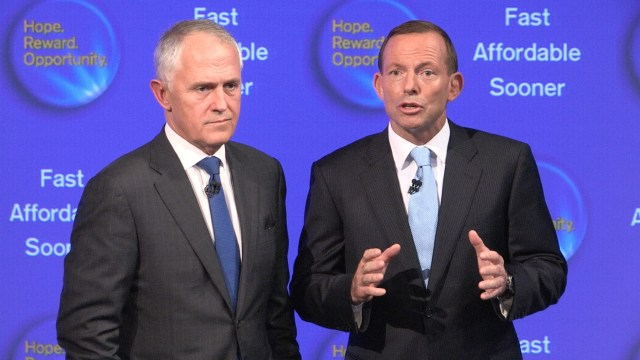 turnbull abbott (Medium) (2)