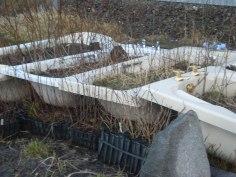 Bath garden, Hillswick, Shetland