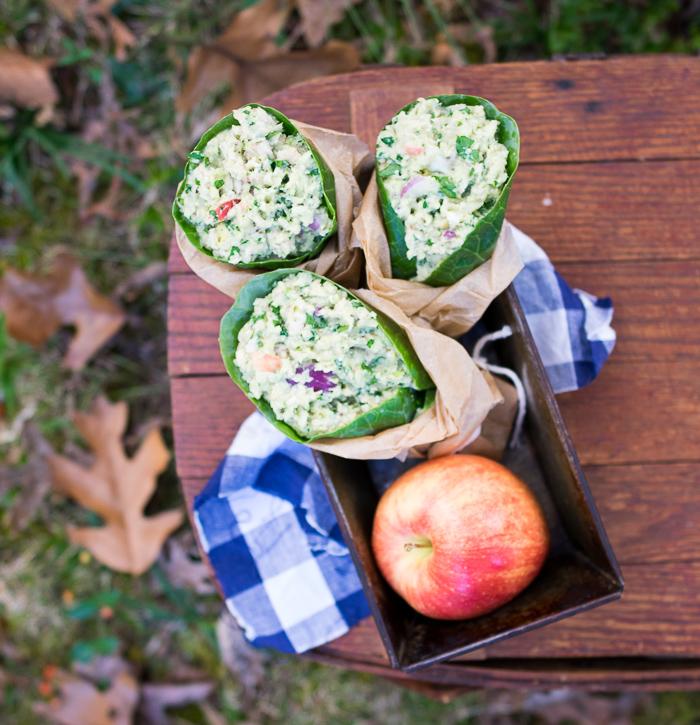 avocado-and-apple-tuna-salad_-2