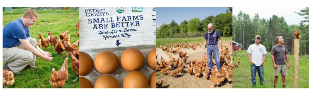 5 Reasons to Buy Organic Eggs | Reclaiming Yesterday