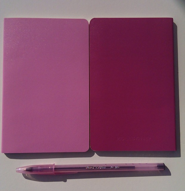 Pink Moleskin Notebooks for Ideas on the Go Blogging Tool Kit