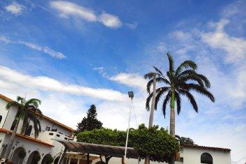 Blauer Himmel, Palmen und Wasser ... Paradies!