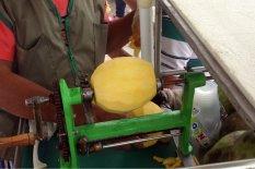 Hier wird die geschälte Mango in etwas festgehalten, das an einen drehbaren Schraubstock erinnert.