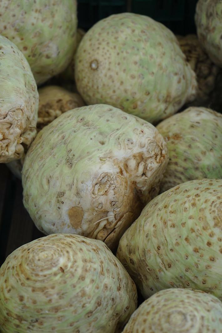 How to Grow Turnips