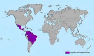 zika world map