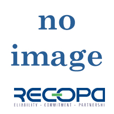 Recopa Ref: RCG3002020 --  GEAR 3rd (34 T)