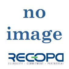 Recopa Ref: RCG3002005 -- SYNCHRONIZING CONE