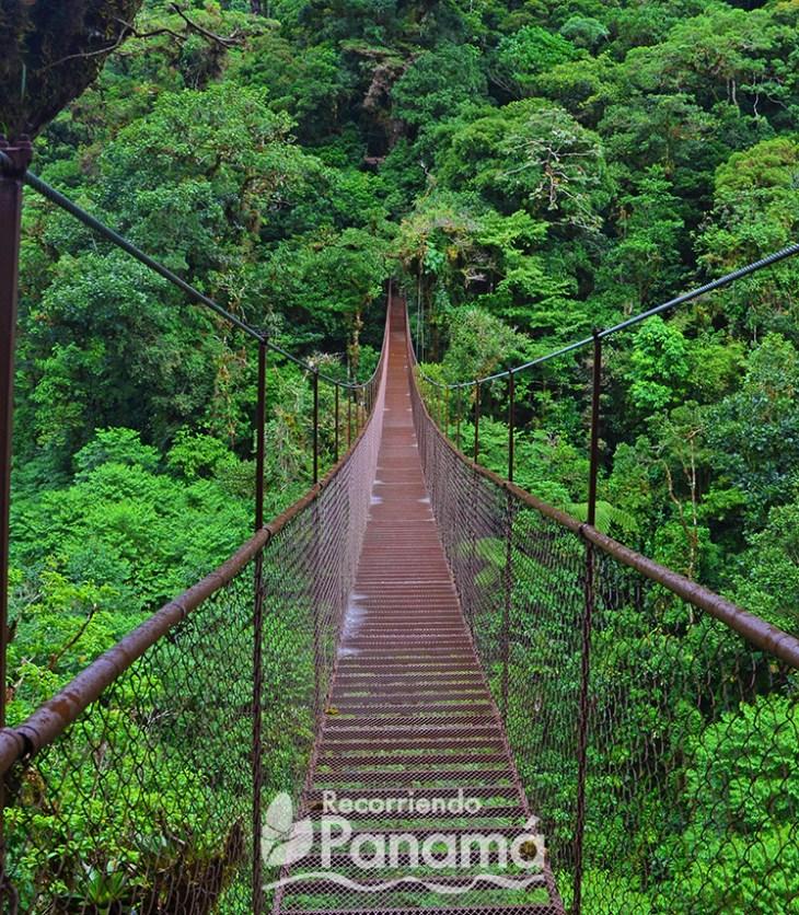 Tercer puente