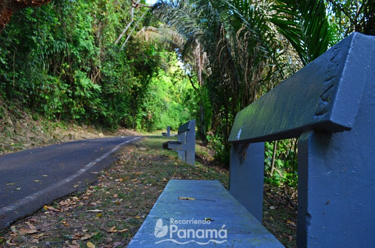 Benches on the road