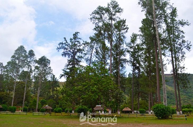 Segunda área de camping de ANAM.
