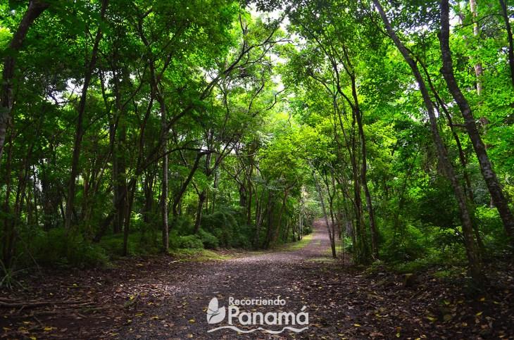 Panama Metropolitan Park