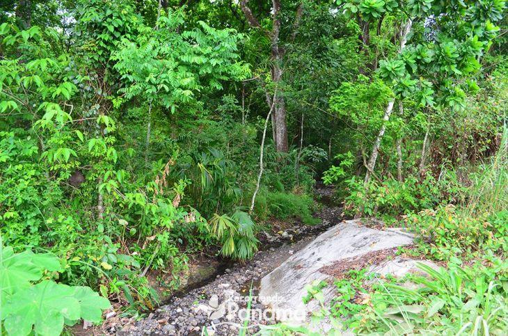 Curundú river