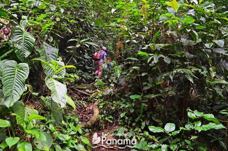 Trinidad Hill trail.