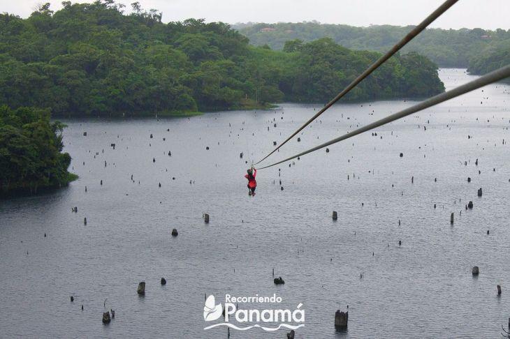 canopy in panama