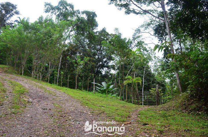 Entrada a la propiedad privada que nos da paso a las cascadas y la cueva del Cacao