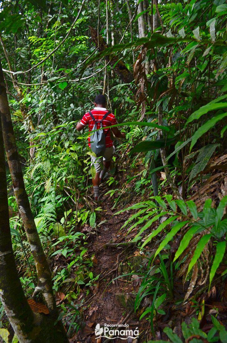 El sendero hacia La Cueva del Cacao