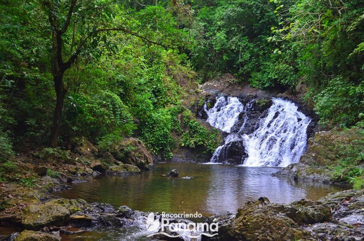 the waterfall of the Chagres River